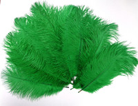 Green Ostrich Feather 8-12 inch size per Each