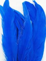 COQUE, 5-8 inch, Royal Blue, per 25