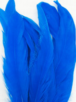 COQUE, 7-10 inch, Royal Blue