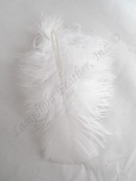 White Craft Feathers Turkey Plumage per ounce package