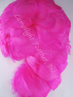 GOOSE COQUILLES, dyed Fuchsia, per foot