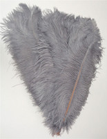 GRAY OSTRICH Feathers LONG