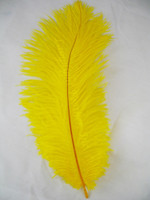 Yellow  Ostrich Feathers