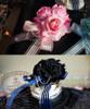 Top: Pink Version Bottom: Dark Blue + Black Version