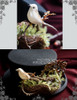 Steel Rose, Steampunk Wedding Dandy Bird Nest & Gear Deco Top Hat