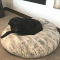 """This is the world Famous Cowboy. He just loves the soft fell of SILVER FOX. This is a 60"""" cover & it fits a Costco Dog Bed."""
