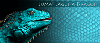 Juma Laguna Dragon, Handle Scales x 2
