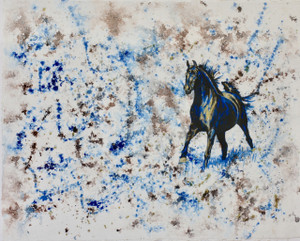 Blue and Brown Series: Black Stallion
