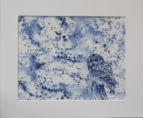 Tawny Owl in Mount