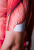 Muscle Cycling Kit
