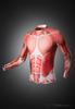 Muscle Rashguard Longsleeve