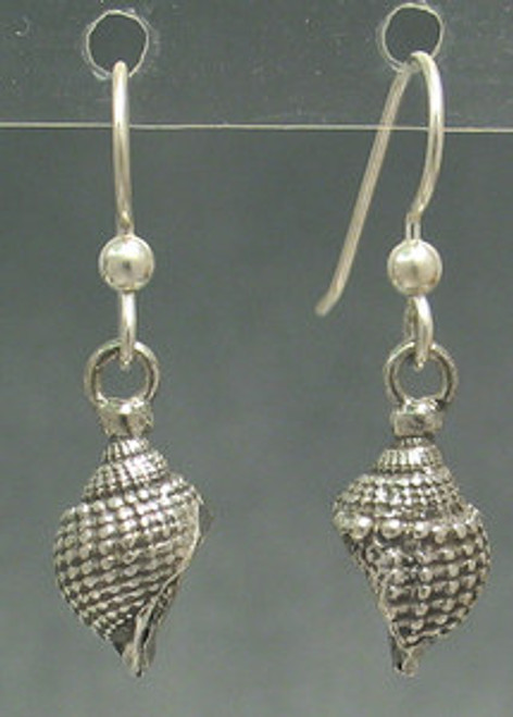 Nutmeg Shell Sea Shell Drop Dangles Beachcomber Series Earrings in Sterling Silver
