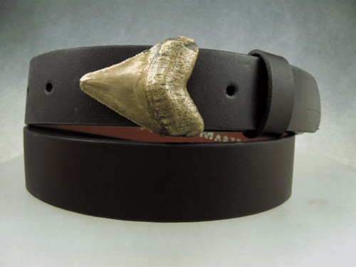 Bronze sharks tooth buckle with natural patina, shown on a 1 1/4 belt
