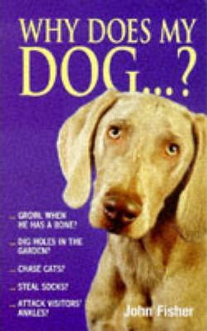 Fisher, John / Why Does My Dog...? (Medium Paperback)