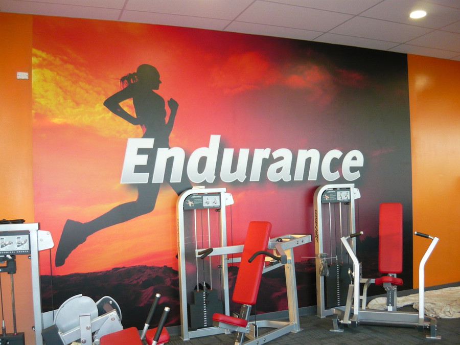 Fitness Studio Wash n Wear Painted Wall