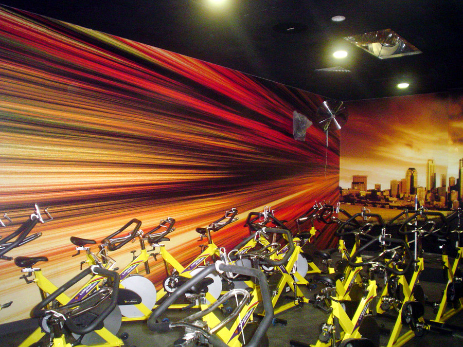 FitnessStudio Standard Wall Graphics with Matte Laminate