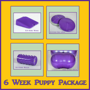 Puppy Package 6 Weeks