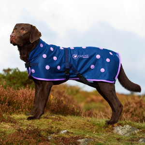 Canine Magnetic Dog Coats