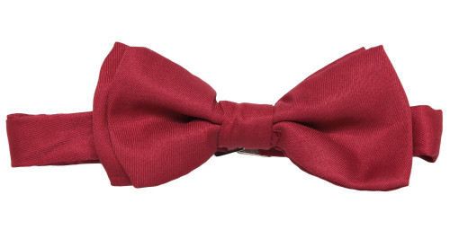 The 11th Doctor Bow Tie