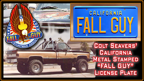"License Plate - FALL GUY - ""FALL GUY"""