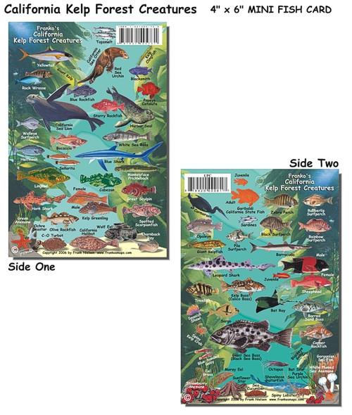 Waterproof Fish ID Card & Map - California Kelp Forest