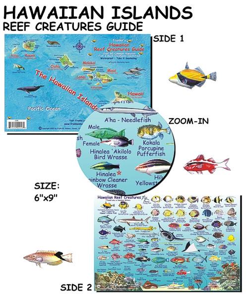 Waterproof Fish ID Card - Hawaiian Islands