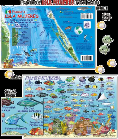 Isla De Los Coronados - Isla Mujeres