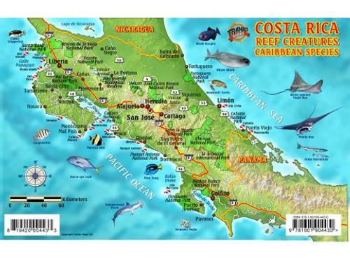 Waterproof Fish ID Card - Costa Rica Caribbean