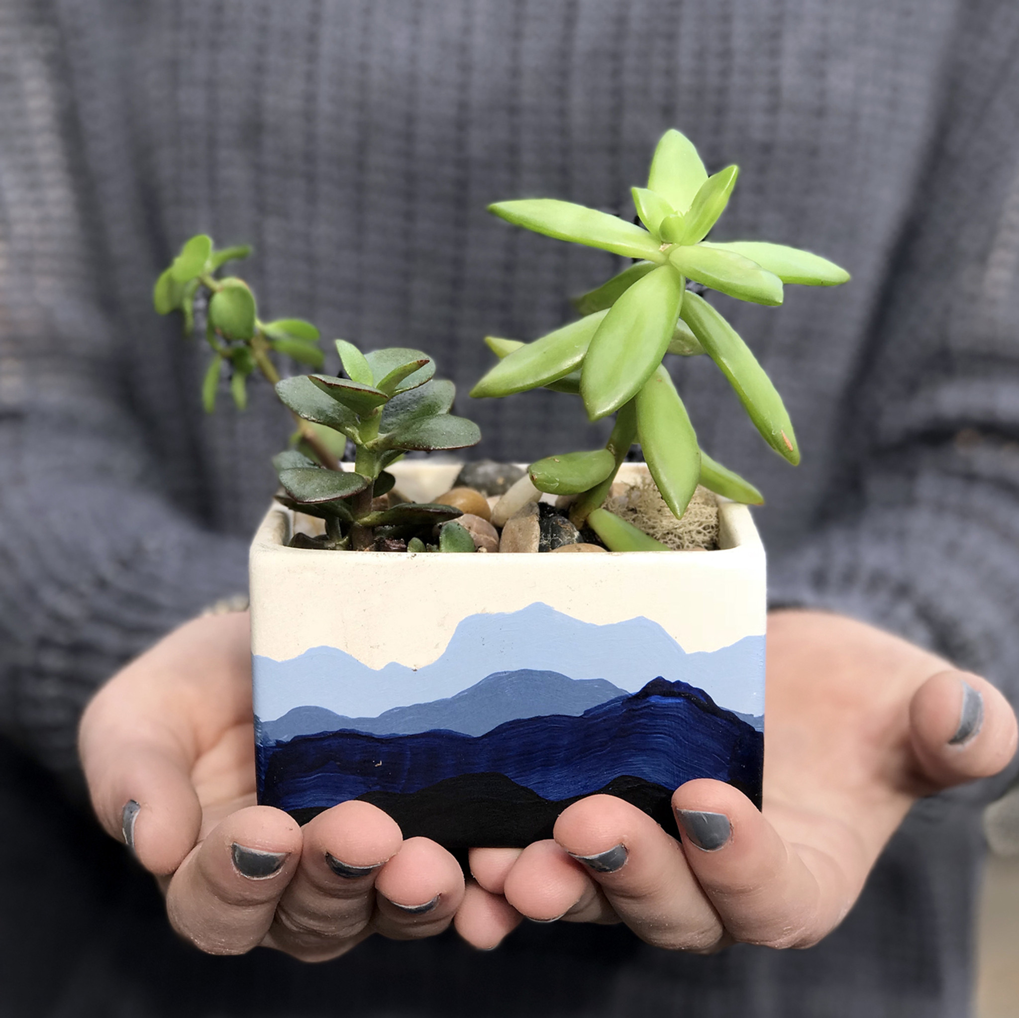 planter planters diy painted the crafted life beauty