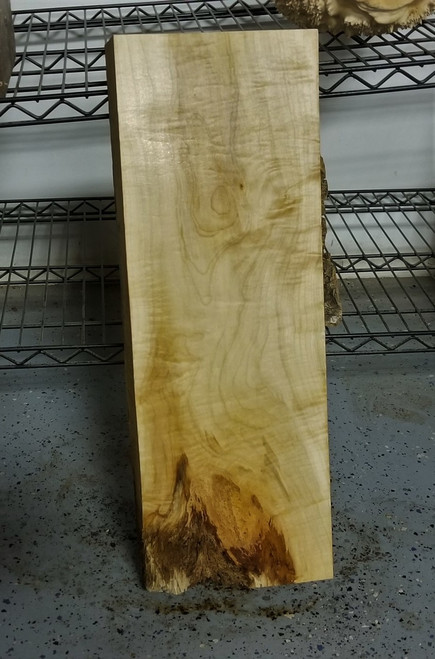 Historical Japanese Maple Tiger Stripe Lumber JMP14c04 *SALE*
