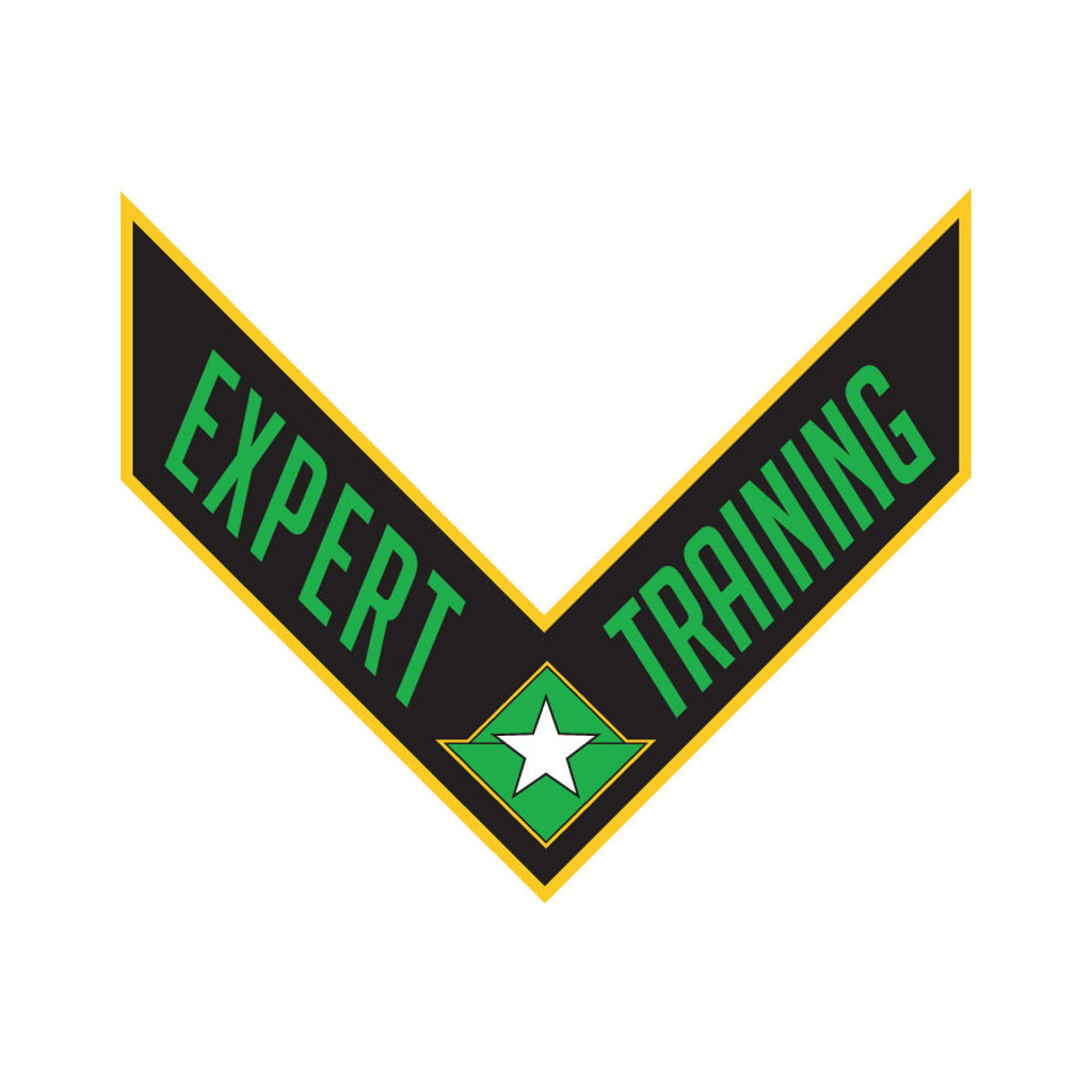 PMA Training Patches - Expert