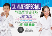*NEW!! Martial Arts Summer Special V2