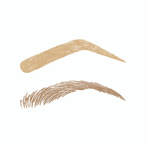 Level 1 Brow Duo Set