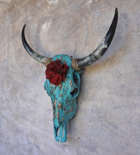 Toro Bravo Cow Skull
