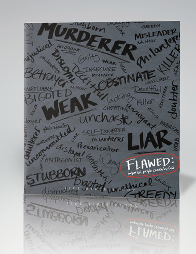 Flawed Bible Study Guide