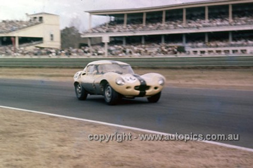 61408 - Frank Matich, D Type Jaguar - Warwick Farm 1961 - Photographer Ian Thorn
