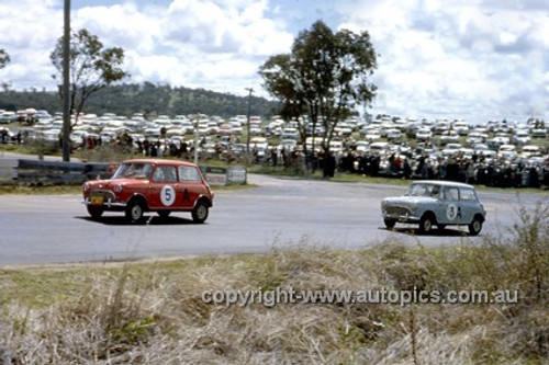 620012 - F. Kleinig & F. Kleinig Jnr. / R. Hayden & A. Hill, Morris 850 - Bathurst Six Hour Classic - 30th September 1962 - Photographer Bruce Wells.