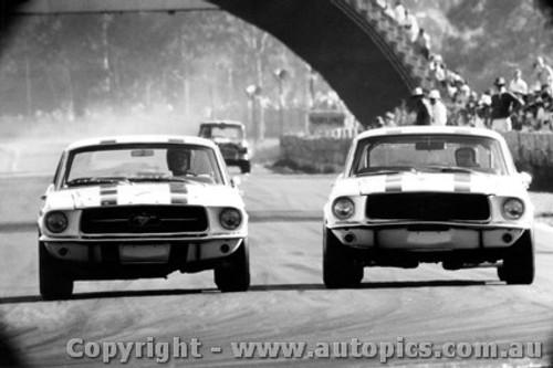 68027 - P. Geoghegan & N. Allen Ford Mustang Under Brakes into Creek corner Warwick Farm 1968