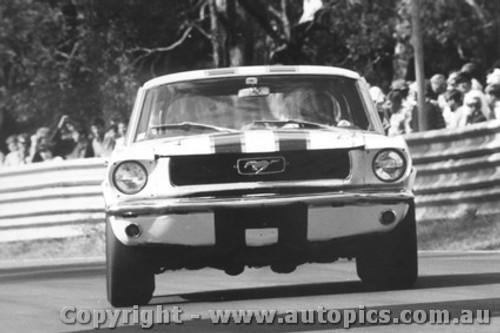 68049 - P. Fahey Ford Mustang - Warwick Farm 1968