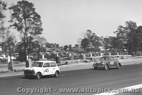 62004 - P. Manton Morris 850 and G. Reynolds Volkswagen VW - Sandown 1962