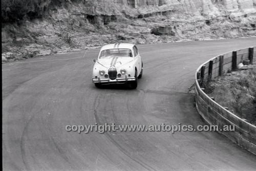 Catalina Park Katoomba - 8th November 1964 - Code 64-C81164- 7