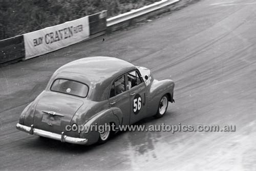 Catalina Park Katoomba - 8th November 1964 - Code 64-C81164- 17