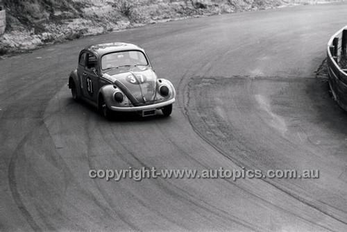 Catalina Park Katoomba - 8th November 1964 - Code 64-C81164- 41