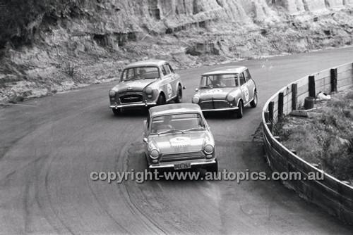 Catalina Park Katoomba - 8th November 1964 - Code 64-C81164- 43