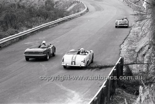 Catalina Park Katoomba - 8th November 1964 - Code 64-C81164- 53