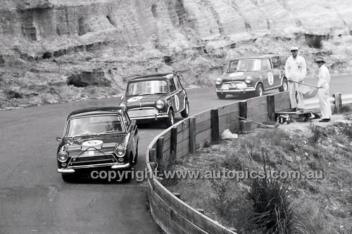 Catalina Park Katoomba - 8th November 1964 - Code 64-C81164- 63