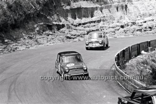 Catalina Park Katoomba - 8th November 1964 - Code 64-C81164- 66