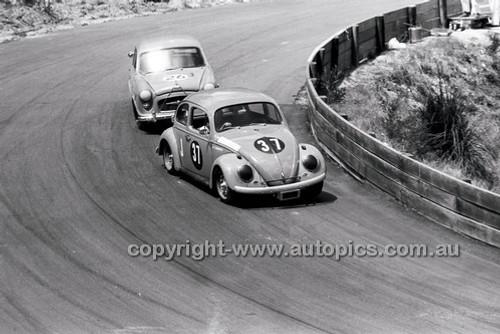 Catalina Park Katoomba - 8th November 1964 - Code 64-C81164- 70