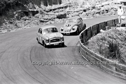 Catalina Park Katoomba - 8th November 1964 - Code 64-C81164- 71