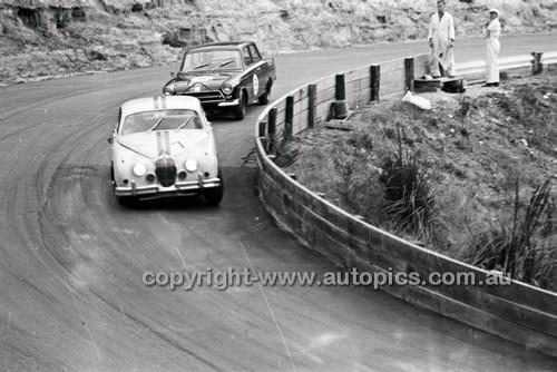 Catalina Park Katoomba - 8th November 1964 - Code 64-C81164- 100